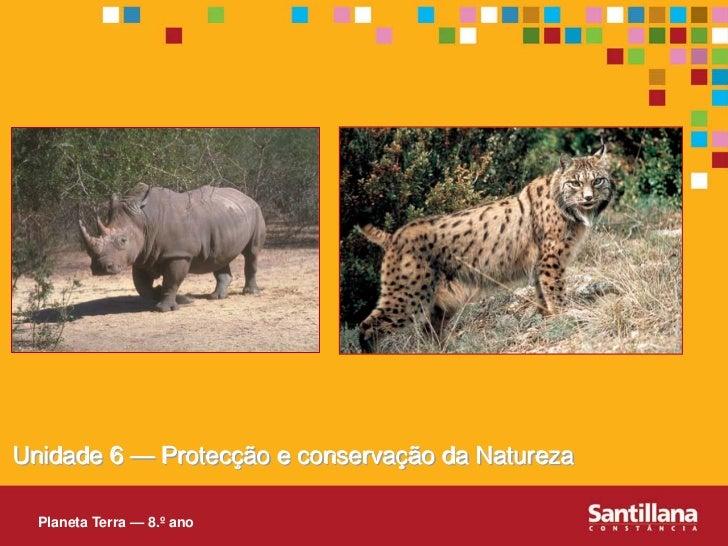Unidade 6 — Protecção e conservação da Natureza    Planeta Terra — 8.º ano