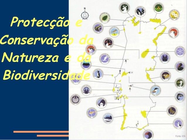 Protecção e Conservação da Natureza e da Biodiversidade