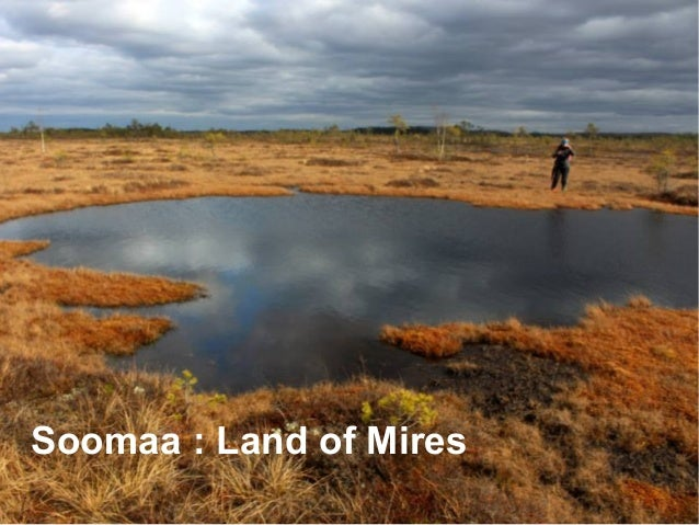 Soomaa national park ● Established 1993 ● RAMSAR site since 1997 ● IBA site (assesed 2003) ● Natura 2000 area ● PAN Park c...