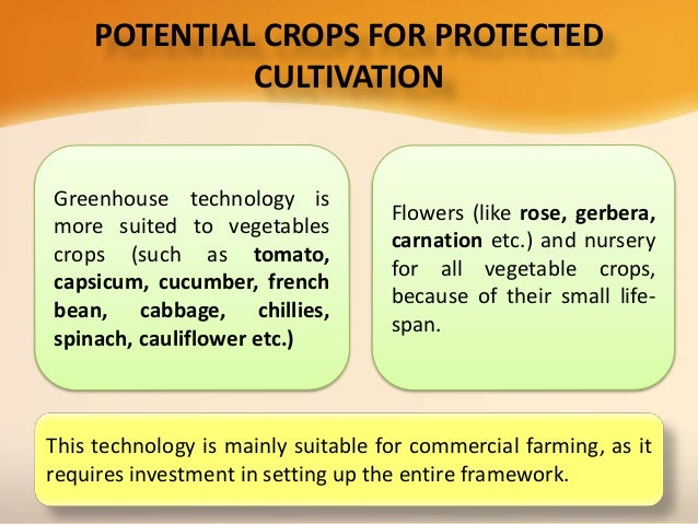 protected cultivation of vegetable crops pdf