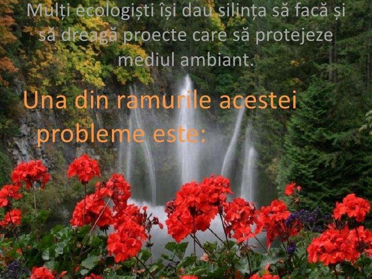 citate despre mediu Protectia mediului inconjurator citate despre mediu