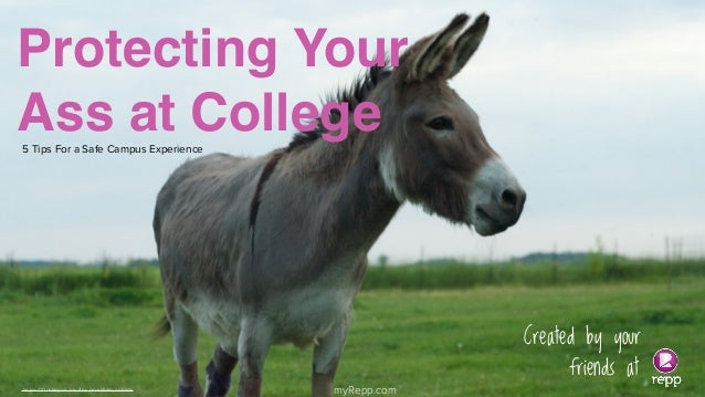 Protecting Your Ass at College 5 Tips For a Safe Campus Experience  Jackie O'Donkey on July 4 by pmarkham, on Flickr  1  m...