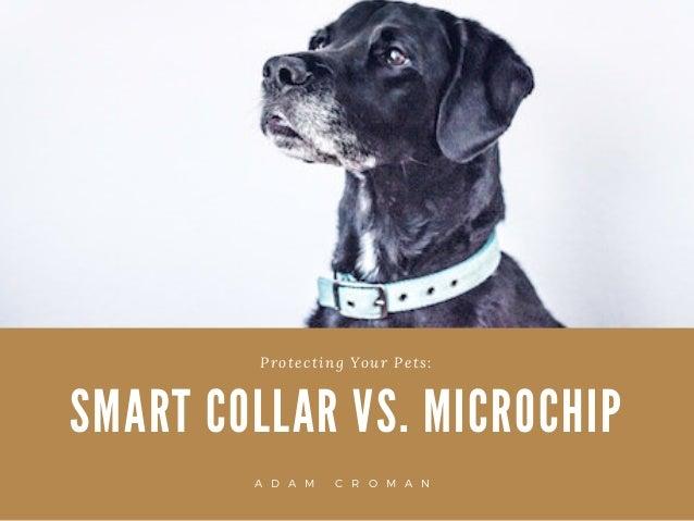 S M A R T C O L L A R V S . M I C R O C H I P Protecting Your Pets: A D A M C R O M A N