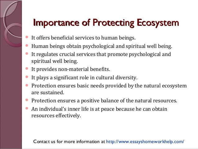 how to protect natural resources essay
