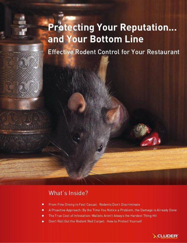 Protecting Your Reputation... and Your Bottom Line Effective Rodent Control for Your Restaurant What's Inside? From Fine D...