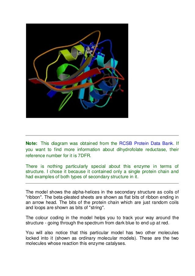 protein 10 638?cb=1386659811 protein Basic Electrical Wiring Diagrams at honlapkeszites.co