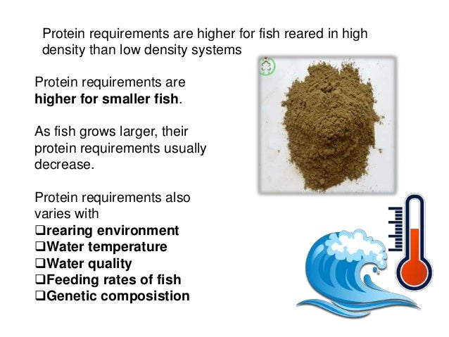 Protein in fishes for Does fish have protein