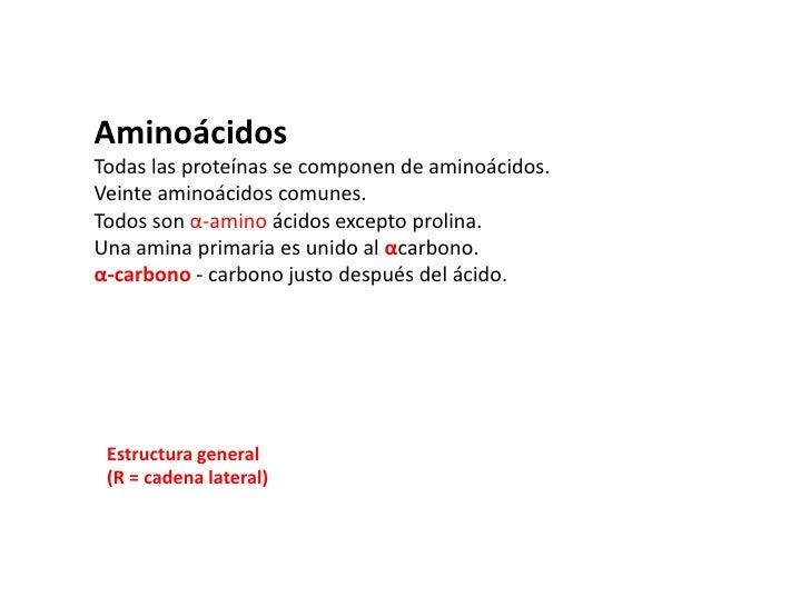 AminoácidosTodas las proteínas se componen de aminoácidos.Veinte aminoácidos comunes.Todos son α-amino ácidos excepto prol...