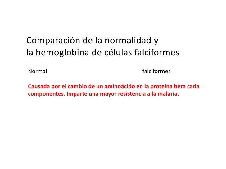 La hemoglobina y la mioglobina<br />Hemoglobina<br />proteína transportadora de oxígeno de los glóbulos rojos.<br />La mio...