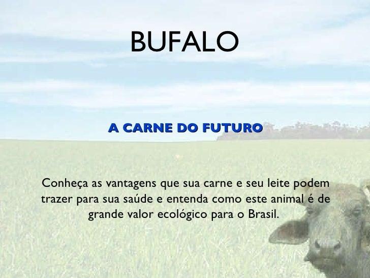 BUFALO <ul><li>A CARNE DO FUTURO </li></ul>Conheça as vantagens que sua carne e seu leite podem trazer para sua saúde e en...