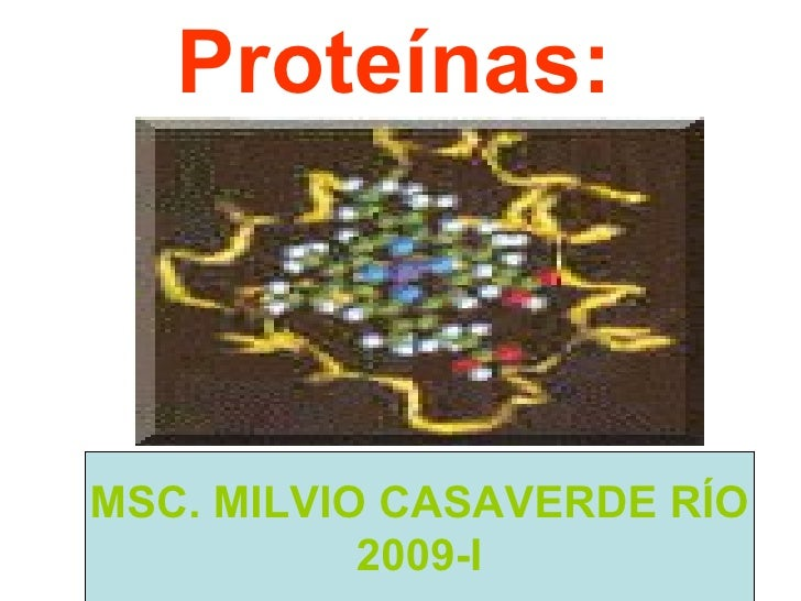 Proteínas:  MSC. MILVIO CASAVERDE RÍO 2009-I