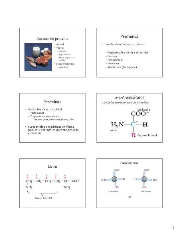 Proteínas  Fuentes de proteína • Animal • Vegetal – Cereales – Leguminosas – Hojas (espinaca y alfalfa)  • Microorganismos...