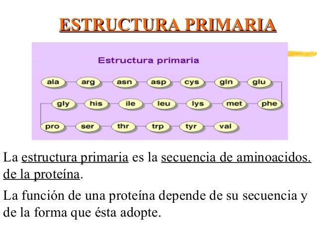 Proteinas Ppt