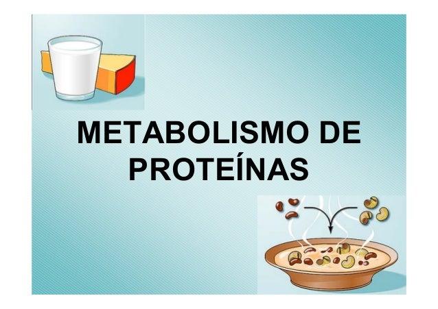 METABOLISMO DEPROTEÍNAS