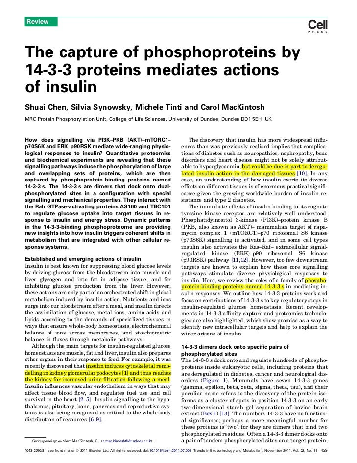 ReviewThe capture of phosphoproteins by14-3-3 proteins mediates actionsof insulinShuai Chen, Silvia Synowsky, Michele Tint...