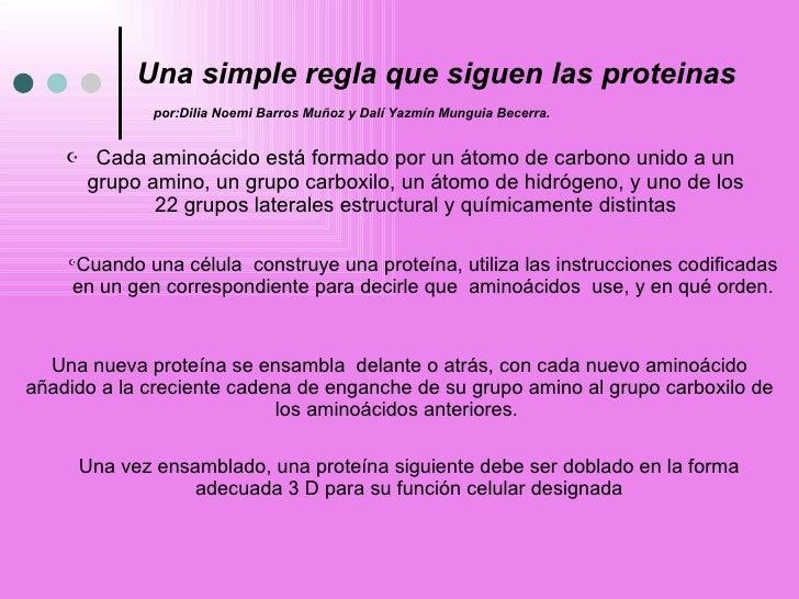 Una simple regla que siguen las proteinas   por:Dilia Noemi Barros Muñoz y Dalí Yazmín Munguia Becerra. <ul><li>Cada amino...