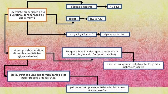 Proteinas estructurales y de defensa