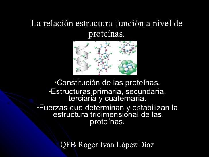 La relación estructura-función a nivel de proteínas. <ul><li>Constitución de las proteínas. </li></ul><ul><li>Estructuras ...