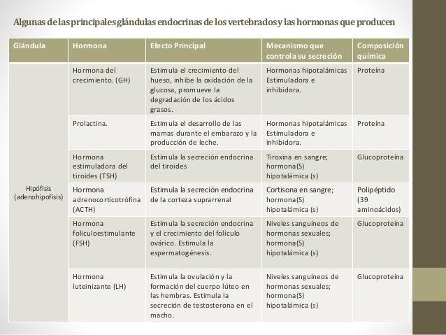 ciclos de esteroides para ganar masa magra