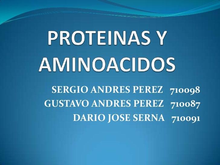 PROTEINAS Y AMINOACIDOS<br />SERGIO ANDRES PEREZ   710098<br />GUSTAVO ANDRES PEREZ   710087<br />DARIO JOSE SERNA   71009...