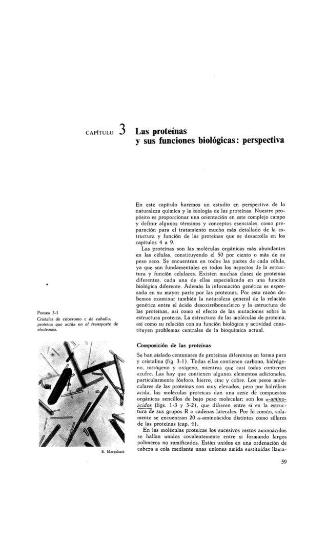 Bioquimica principios pdf de lehninger