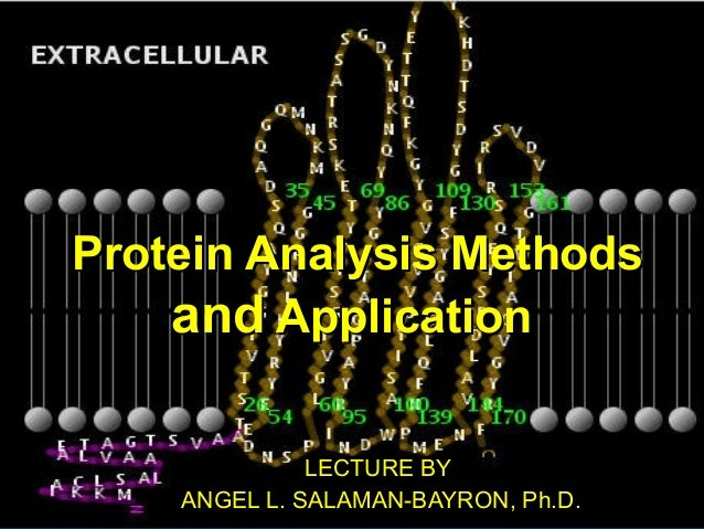 Protein Analysis MethodsProtein Analysis Methods andand ApplicationApplication LECTURE BYLECTURE BY ANGEL L. SALAMAN-BAYRO...