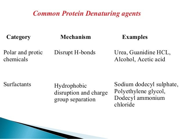 Protein drug delivery systems2