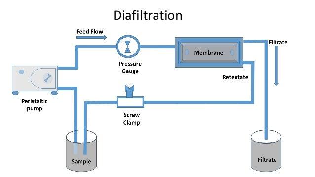 diafiltration