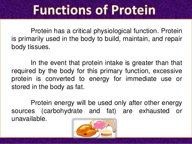 the importance of proteins for the human body Exercise requires healthy muscles and protein in your diet is important for  our  bodies don't have a storage form for extra dietary protein so when we eat  eggs  – the 'king' of the proteins and full of healthy amino acids milk, cheese.