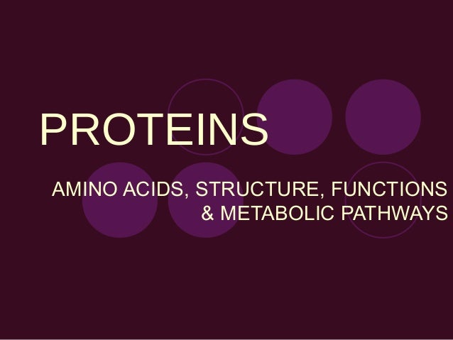 PROTEINS AMINO ACIDS, STRUCTURE, FUNCTIONS & METABOLIC PATHWAYS