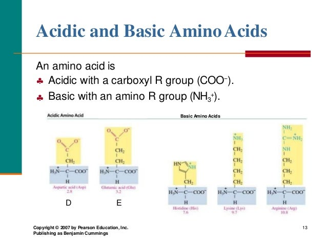 Amino acids and proteins denaturation of proteins acidic and basic aminoacids altavistaventures