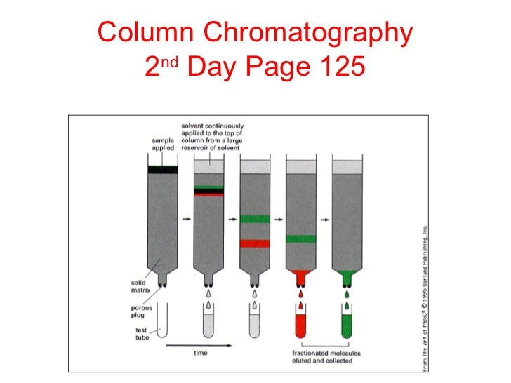 a research on proteins gel filtration chromatography and estimation of molecular weight In gel filtration, the large protein molecules pass through the column, and the  small  of proteins of different molecular weight can be accomplished by gel  filtration  the purity of a protein solution can be determined by such techniques  as chromatography and gel filtration  in thermoreception: study of  thermoreceptors.