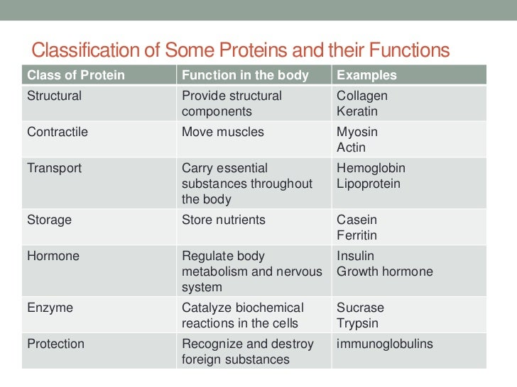 Structure and function of proteins essay writer
