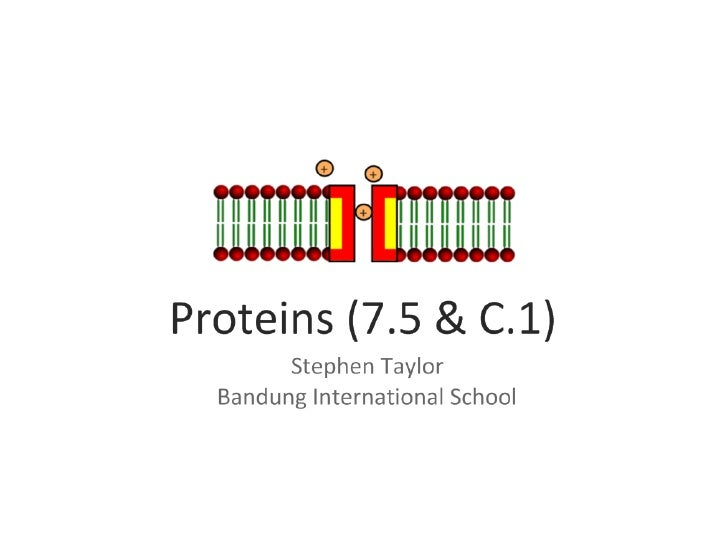Proteins (AHL & C.1)