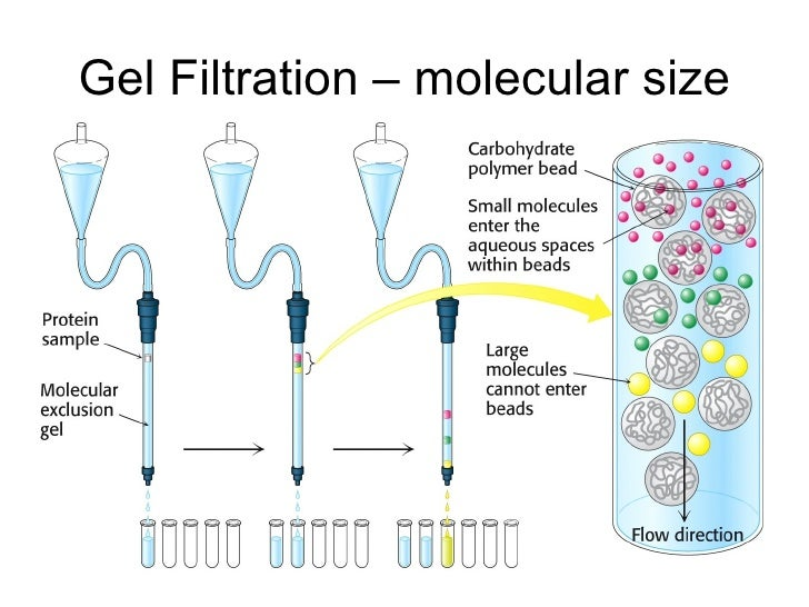 Size-exclusion chromatography