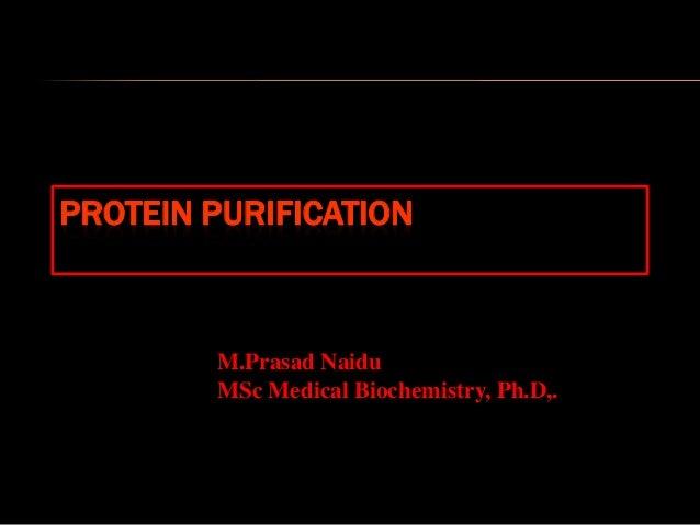 PROTEIN PURIFICATION M.Prasad Naidu MSc Medical Biochemistry, Ph.D,.