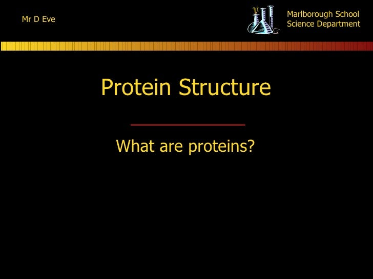 Protein Structure What are proteins?