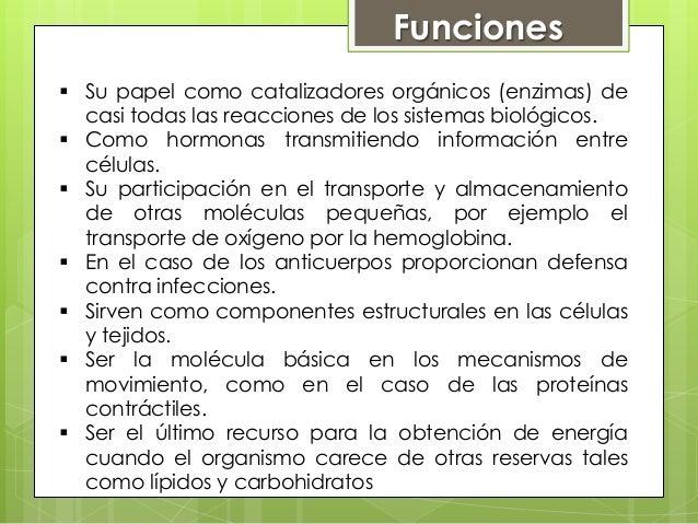 Proteínas Slide 2