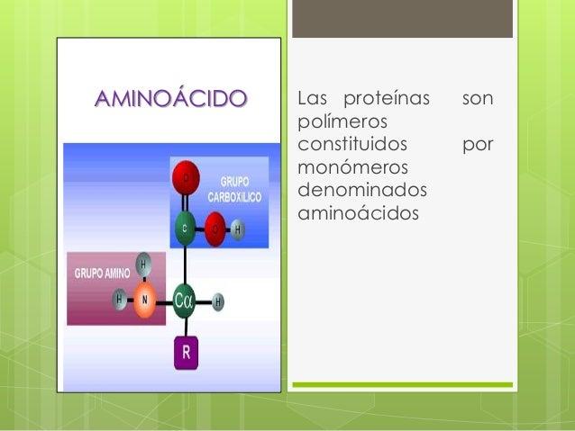 Proteínas Slide 3