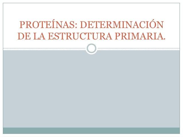 Proteínas Determinación De La Estructura Primaria