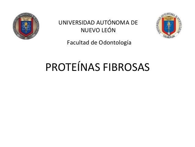 PROTEÍNAS FIBROSAS UNIVERSIDAD AUTÓNOMA DE NUEVO LEÓN Facultad de Odontología