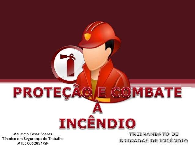 Mauricio Cesar Soares Técnico em Segurança do Trabalho MTE: 0062851/SP
