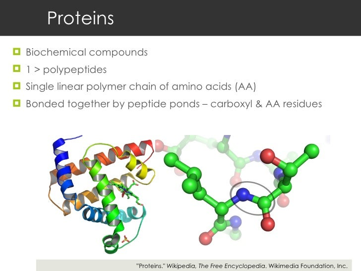 Proteomics Slide 3