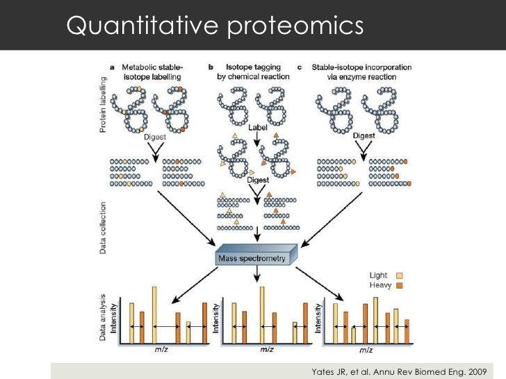 Quantitative proteomics Yates JR, et al. Annu Rev Biomed Eng. 2009