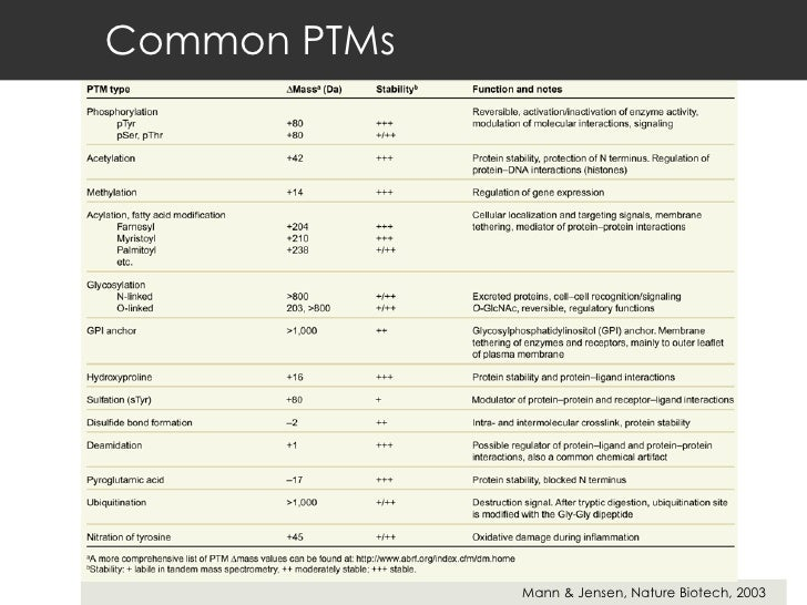 Common PTMs Mann & Jensen, Nature Biotech, 2003