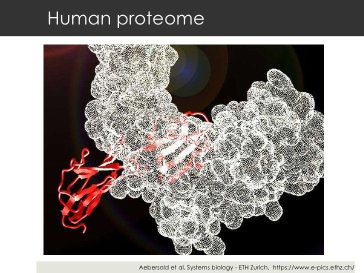 Human proteome Aebersold et al, Systems biology - ETH Zurich,  https://www.e-pics.ethz.ch/