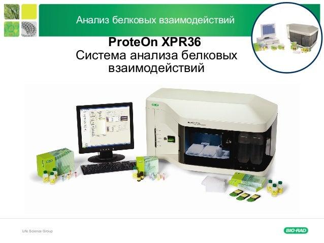 Life Science Group Анализ белковых взаимодействий ProteOn XPR36 Система анализа белковых взаимодействий