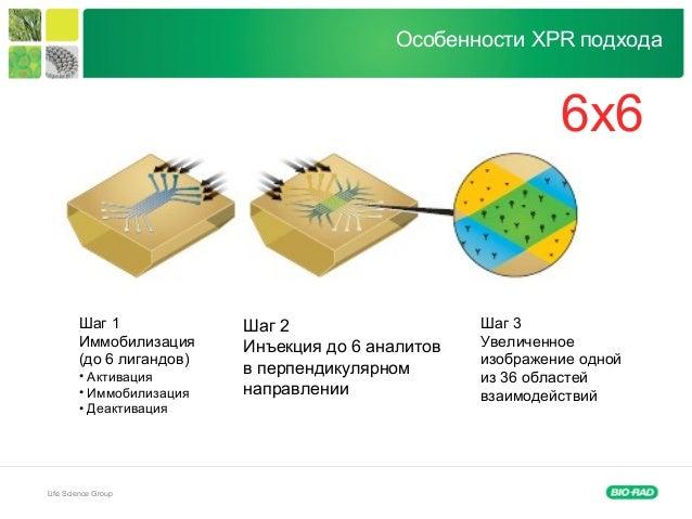 Life Science Group Шаг 1 Иммобилизация (до 6 лигандов) • Активация • Иммобилизация • Деактивация Шаг 2 Инъекция до 6 анали...