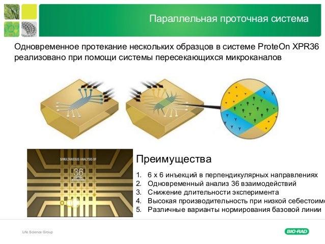 Life Science Group Параллельная проточная система Одновременное протекание нескольких образцов в системе ProteOn XPR36 реа...