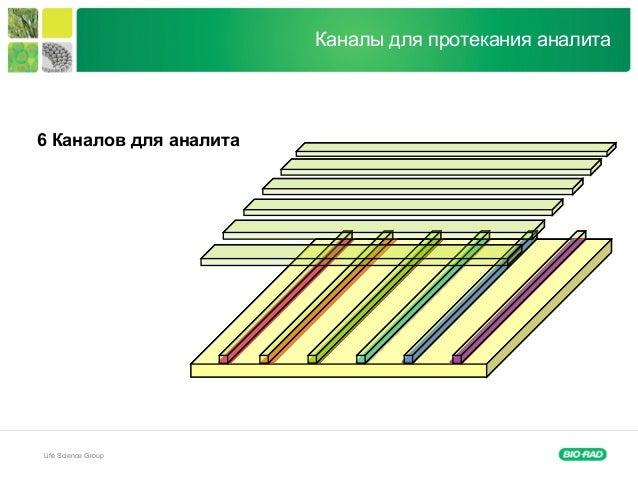 Life Science Group Каналы для протекания аналита 6 Каналов для аналита